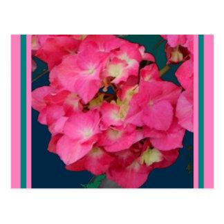 バレンタインのSharles著ピンクのアジサイ及びティール(緑がかった色)のギフト ポストカード