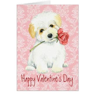 バレンタインばら色のCoton カード