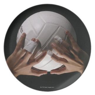 バレーボール手 プレート