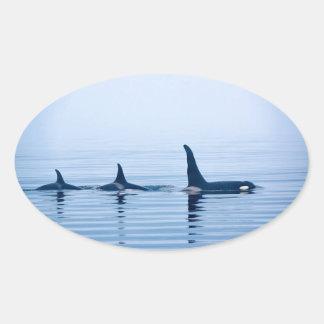バンクーバー島のkillerwhaleかシャチ 楕円形シール