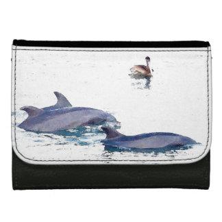 バンドウイルカの野性生物動物の海