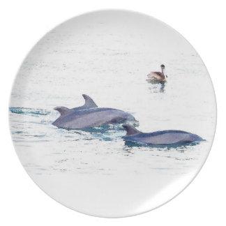 バンドウイルカの野性生物動物の海 プレート
