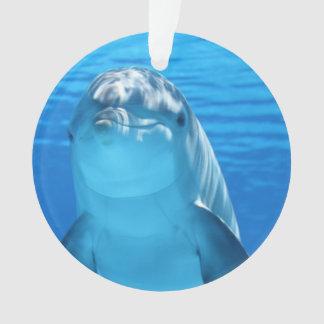 バンドウイルカは水の下でカメラを見ます オーナメント