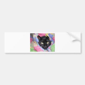 バンパーステッカー: 毛布で包まれたなおもしろいな猫 バンパーステッカー