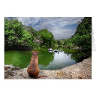 バートンの入り江-オースティンテキサス州の犬 カード