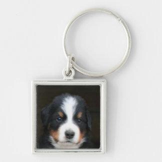 バーニーズ・マウンテン・ドッグの子犬のkeychain キーホルダー