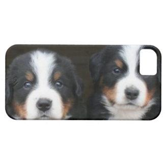 バーニーズ・マウンテン・ドッグのiPhone 5の穹窖ID™ iPhone SE/5/5s ケース