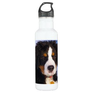 バーニーズ・マウンテン・ドッグ-かわいい子犬の写真 ウォーターボトル