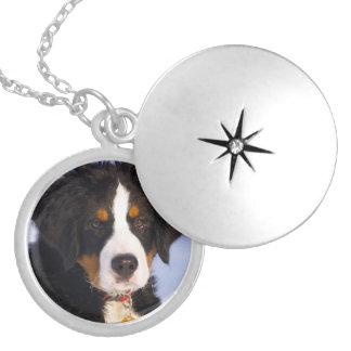 バーニーズ・マウンテン・ドッグ-かわいい子犬の写真 ロケットネックレス