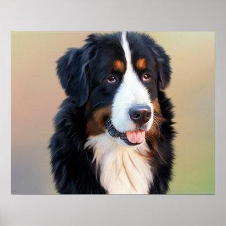 バーニーズ・マウンテン・ドッグ、従順な犬 ポスター