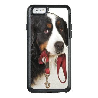 バーニーズ・マウンテン・ドッグ(Berner Sennenhund) オッターボックスiPhone 6/6sケース