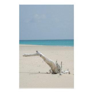 バーブーダの流木のビーチ 便箋
