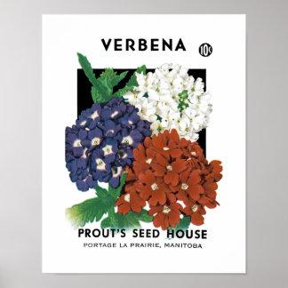 バーベナの種の包みのラベル ポスター