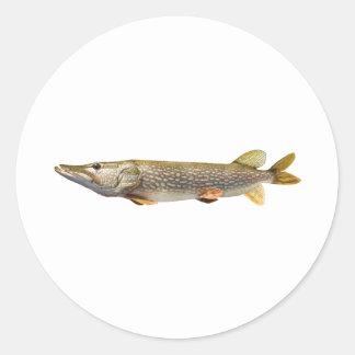 パイクMuskiの魚釣り ラウンドシール