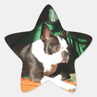 パイパーとのボストンテリアのクリスマス 星シール