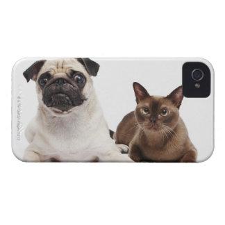 パグおよびビルマ猫 Case-Mate iPhone 4 ケース