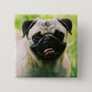 パグの子犬の正方形Pin 5.1cm 正方形バッジ