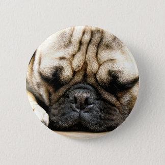 パグの子犬 缶バッジ