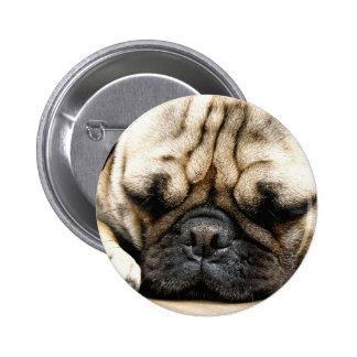 パグの子犬 5.7CM 丸型バッジ