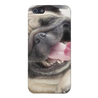 パグのIphoneかわいい5の場合 iPhone 5 Cover