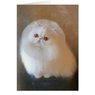 パステル調のスケッチ破片ペルシャ猫カード カード