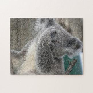 パズルのコアラの野性生物動物 ジグソーパズル