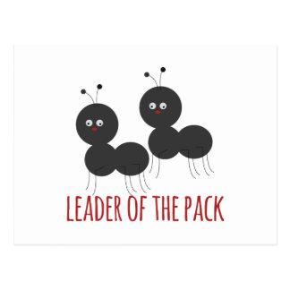 パックのリーダー ポストカード