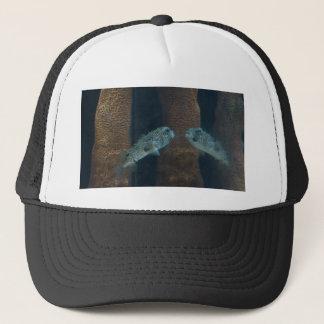 パッファーの魚の蜃気楼 キャップ