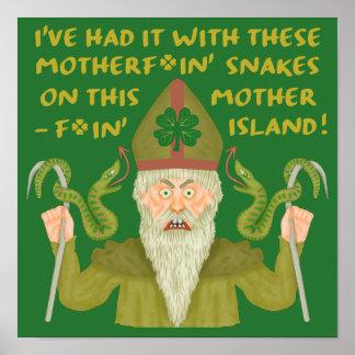 パトリキウスのおもしろいな日は冗談の緑のアイルランド人を蛇行させます ポスター