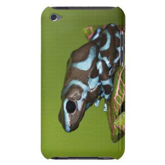 パナマへの先住民 Case-Mate iPod TOUCH ケース
