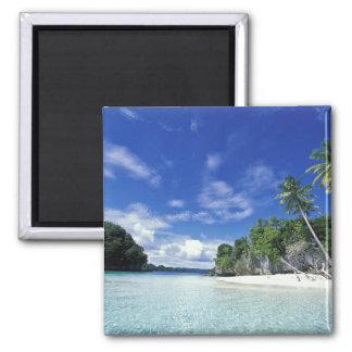 パラオ諸島の石の島、新婚旅行の島、世界 マグネット