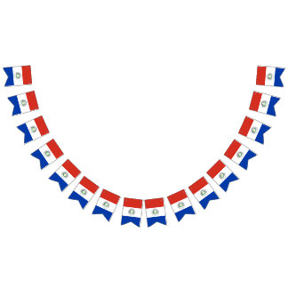 パラグアイの旗 バンティングフラッグ