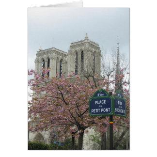 パリのピンクの花 カード