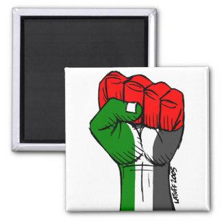パレスチナの磁石 マグネット
