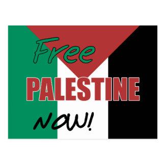 パレスチナの自由な今パレスチナの旗 ポストカード