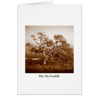 パロ・アルトのふもとの小丘 カード