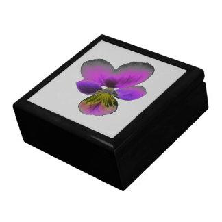 パンジーの野生の暗い紫色のギフト用の箱 ギフトボックス