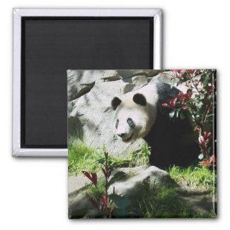 パンダのスマイルの磁石 マグネット