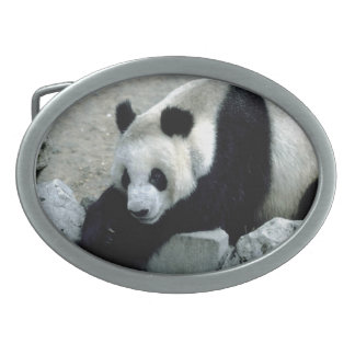 パンダのベルトの留め金 卵形バックル