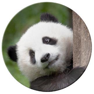 パンダの幼いこどもの絵画の磁器皿 磁器プレート
