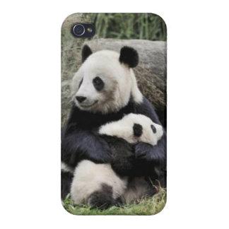 パンダの抱擁 iPhone 4 CASE