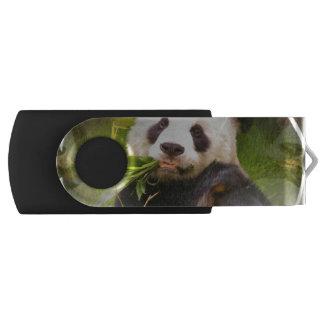 パンダの生息地 USBフラッシュドライブ
