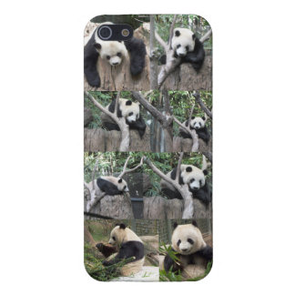 パンダのiPhone 5の場合 iPhone 5 ケース