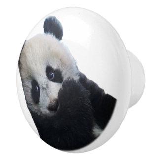 パンダ セラミックノブ