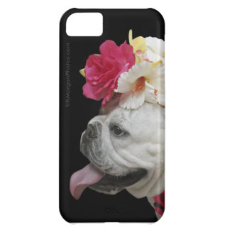 パーティ 動物 iPhone 5 場合