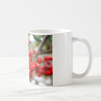 ヒイラギの果実のマグ コーヒーマグカップ