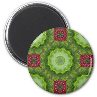 ヒイラギの果実の目まぐるしい曼荼羅のデザイン マグネット