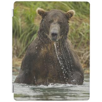 ヒグマ、サケのために採取している男性 iPadスマートカバー
