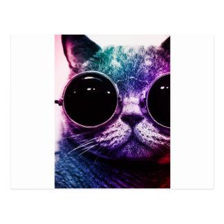 ヒップスター猫のポップアート ポストカード