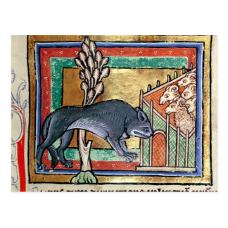 ヒツジの外のMSローイAのオオカミは折ります ポストカード